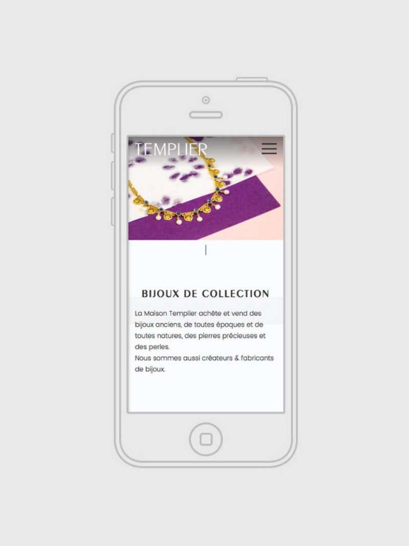 d65a36848af Identité visuelle et site web en responsive design pour Templier ...